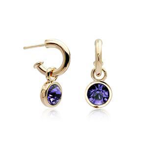Austrian crystal earring85105(120329)