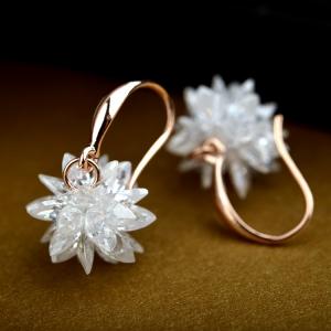 Allencoco Crystal earring 2080230002